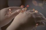 아름다운 빈 손