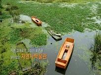 [교과서e문화유산] 창녕 우포늪 천연보호구역
